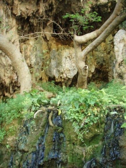 la Grotte de saint Antoine