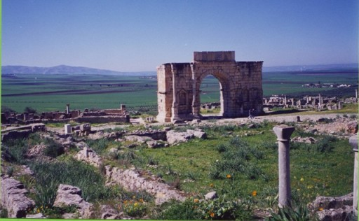 Volubilis - Copie