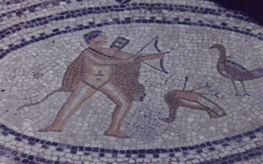Travaux d'Hercule : les oiseaux du Lac Stymphale