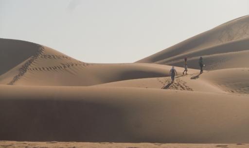 A l'assaut de la Grande Dune
