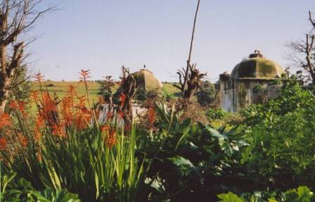 tombeaux mérinides dans un jardin fleuri