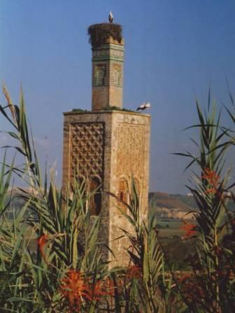 Chellah mosquée