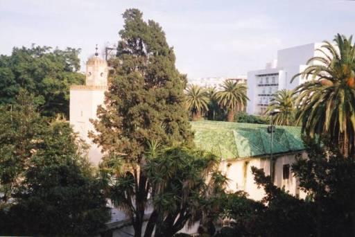 vue e notre chambre sur la Mosquée des Andalous et le jardin du triangle de vue