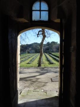 Provence Dtsaint rémy 031 - Copie