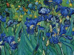 vangogh iris