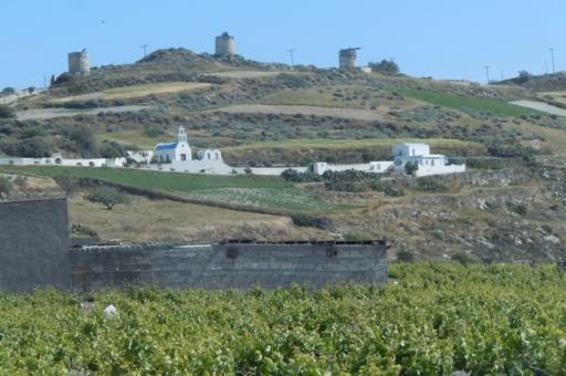 Les moulins d'Emborio, églises et vigne