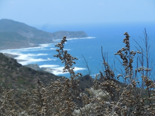 sentier côtier près de Pedraia