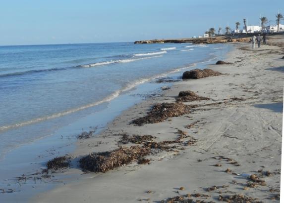 La plage à la Chebba
