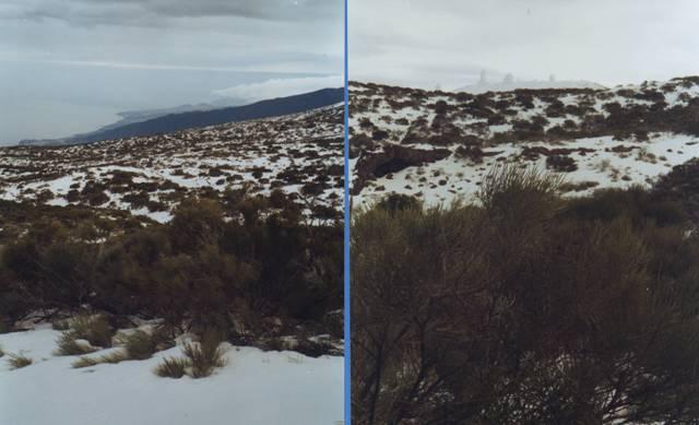 Le Teide sous la neige!