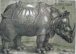 rhinoceros de Dürer