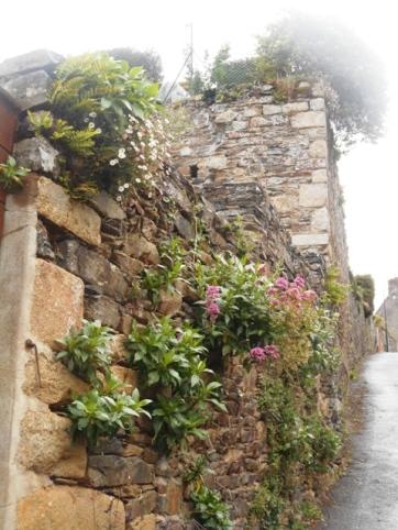 les murs en pente de La Roche-Derrien