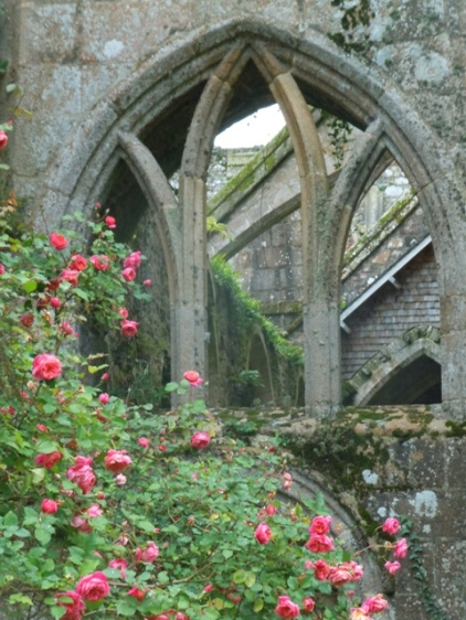 Roses et ruines