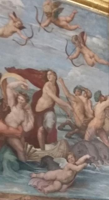 Raphaël : Galatea