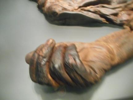la main de la momie