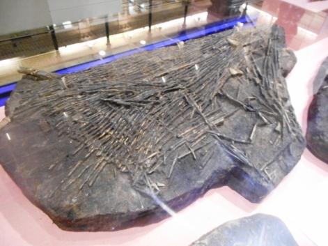 nasse à poissons préhistorique